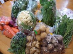 あぐりん野菜.JPG
