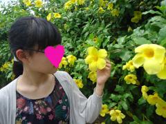 黄色花かな.JPG
