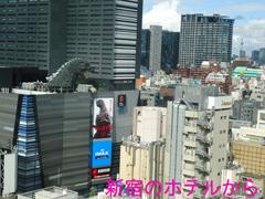 ホテルの窓.JPG